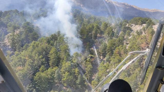 Antalyadaki orman yangını kontrol altında