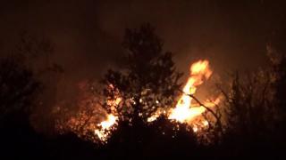 Mersin'de makilik alanda çıkan yangın söndürüldü