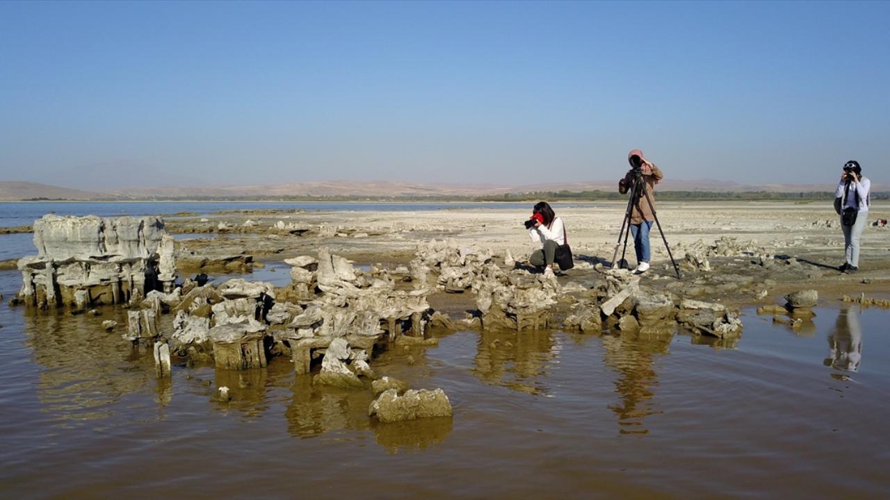 Dalacak su kalmadı: Mikrobiyalitler ortaya çıktı