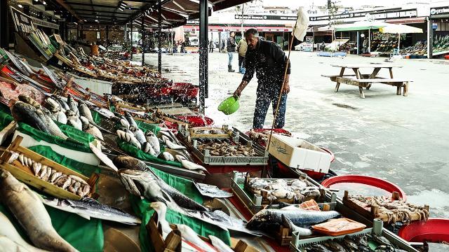 İstanbulda balık bereketi fiyatlara yansıdı