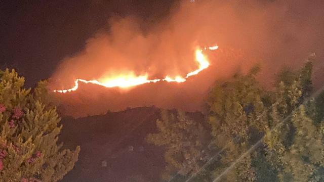 Bodrumda otluk ve makilik alanda yangın