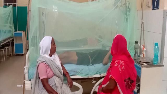 Pakistanda 2 bin 400ün üzerinde dang humması görüldü