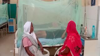 Pakistan'da 2 bin 400'ün üzerinde dang humması görüldü