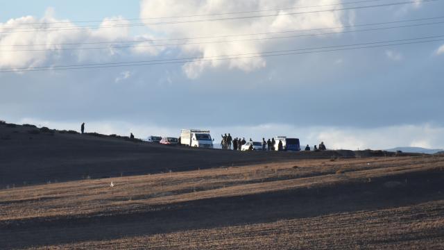 Karsta `köpek dövüşü` operasyonunda 41 kişi hakkında işlem yapıldı