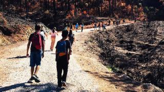 Marmaris'te öğrenciler ormanları korumaya yemin etti