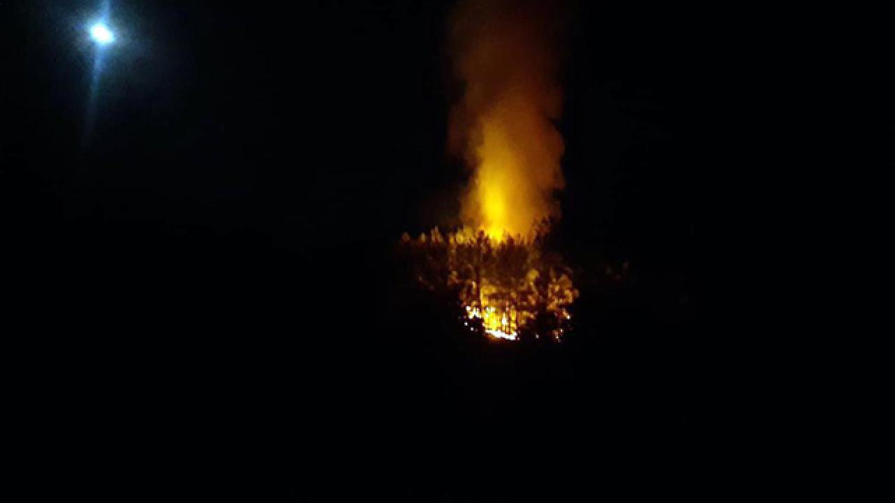 Fethiye'de orman yangını: Müdahale sürüyor