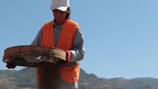Sahillerde petrol sızıntısı temizliği sürüyor