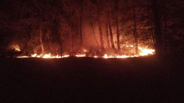 Hataydaki orman yangını söndürüldü