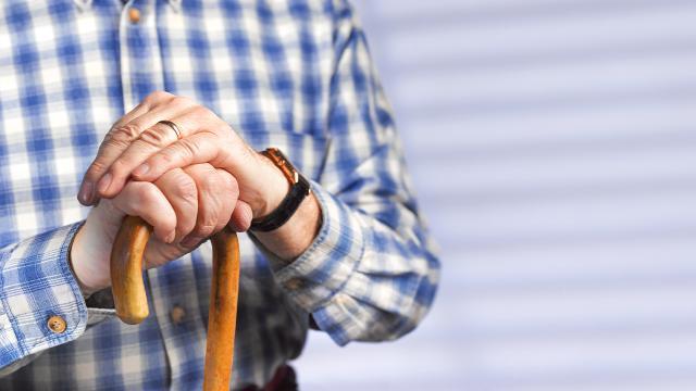 Yaşlılara yönelik hizmetlerin kalitesi YAGEPle artırılacak