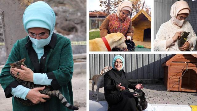 """Emine Erdoğandan """"Hayvanları Koruma Günü"""" paylaşımı"""