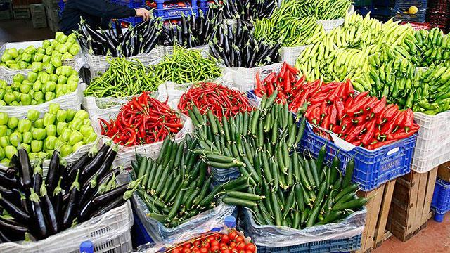 Soğuk Zincir Destek Programı ile sebze meyvede zayiat azalacak