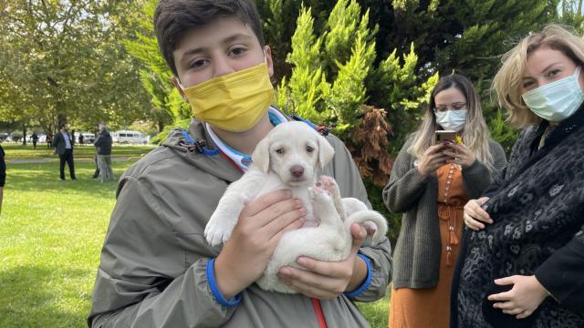Samsunda çocuklar `Pati Şenliğinde` sokak hayvanlarıyla buluştu