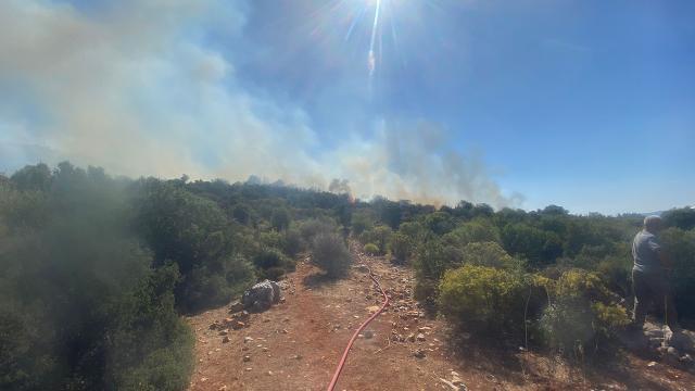 Antalyada makilik alanda yangın