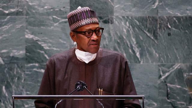 Nijerya Başkanı Buhari: Libyada istikrarsızlık Afrikada silahları yayıyor