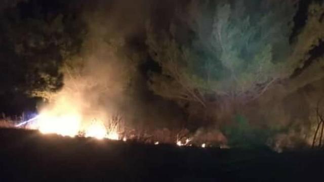 Yüksek gerilim hattına çıkan porsuk, orman yangınına neden oldu