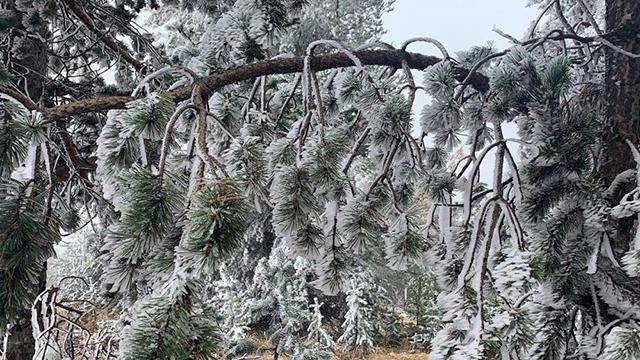 Sarıkamış buz kesti: Termometreler eksi 10u gördü