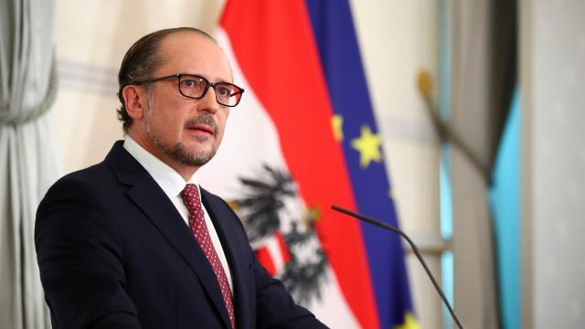 Avusturyada yeni Başbakan Schallenberg göreve başladı