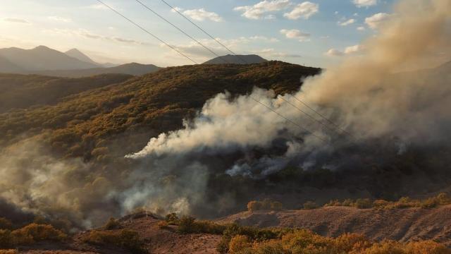 Bingölde 4 ayrı noktada çıkan orman yangınlarının 3ü söndürüldü