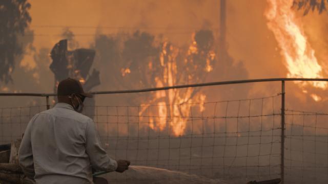 Californiada yangın: Olağanüstü hal ilan edildi