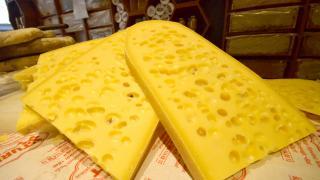 Kars'ta sezonun ilk gravyer peyniri tezgahlarda yerini aldı