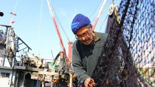Karadenizli balıkçılar Marmara'da lüfer avlıyor