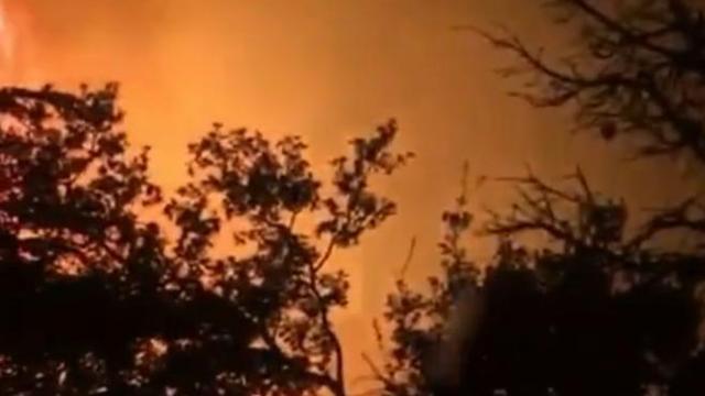 Kemerde orman yangını