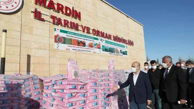 Mardinde çiftçilere hibe destekli tohum dağıtıldı