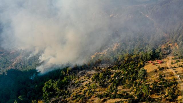 Antalyadaki yangın güçlükle kontrol altına alındı
