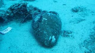 5 bin yıl önce gemilere geçit vermeyen boğazda 8 batık bulundu
