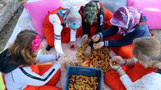 Çankırı'daki rehabilitasyon merkezi sakinleri atıl arazileri ekonomiye kazandırıyor