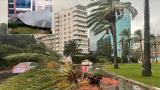 İzmir'de kuvvetli rüzgar ağaçları devirdi çatıları uçurdu