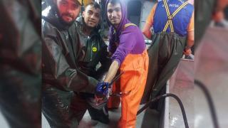 İstanbul Boğazı'nda ağa kılıç balığı takıldı