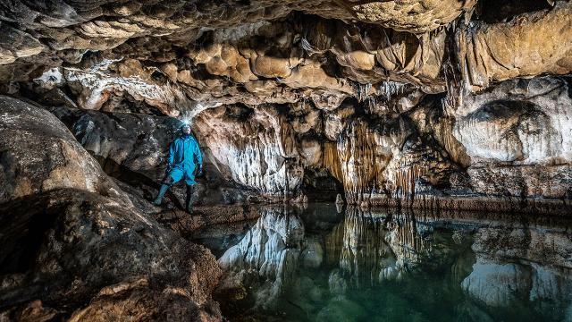 Mağaralarda yaşayan hayvan türleri araştırılıyor