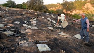 Mersin'de 250 kovan yandı, milyonlarca arı öldü