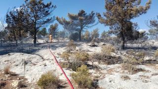 Mersin'de otluk alanda çıkan yangın söndürüldü
