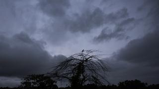 Hindistan'da şiddetli yağış ve sel: 8 can kaybı ve 12 kayıp