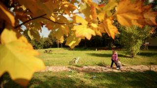 Düzce'deki Aydınpınar Şelalesi Tabiat Parkı'nda sonbahar güzelliği