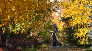 Botanik Park sonbahar renkleriyle ayrı bir güzelliğe kavuştu