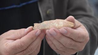 8 bin yıl öncesine ait 'balık' figürü bulundu