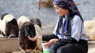 Doğubayazıtlı genç kız muhtarlık yaptığı köye hizmet için çabalıyor