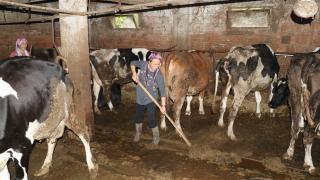 """Süt üreticisi """"süper eltiler"""" birlikte çalışıp kazanıyor"""
