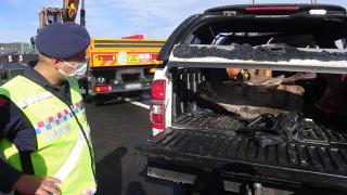 Kaza yaptıkları araçlarından geyik çıkan 2 avcıya ceza yağdı