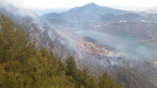 Mersin'de makilik alanda yangın