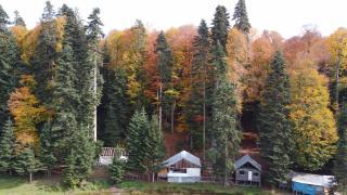 Pürenli Yaylası'nda sonbahar
