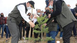 Sivas'ta `İki Fidan Birlikte Büyüyor` projesiyle 13 bin bebek için fidanlar dikildi