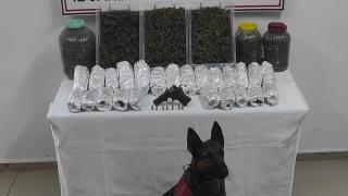 Kocaeli'de uyuşturucu operasyonunda bir şüpheli tutuklandı