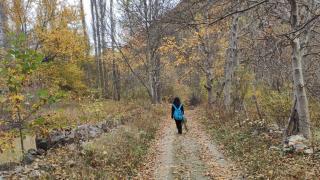 Sivas'ta doğaseverler Oymadere Yaylası'na hayran kaldı