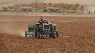 Kırşehir'de kuraklığa dayanıklılığının tespiti için 35 çeşit arpa ve buğdayın deneme ekimi yapıldı