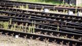 Avustralya'da yolcu treni raylara terk edilen araca çarptı