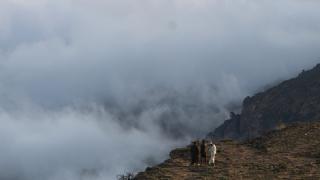 Bulutların üzerine çıkmak isteyenler Semhan Dağı'na gidiyor